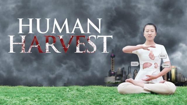 Zwangsentnahme menschlicher Organe